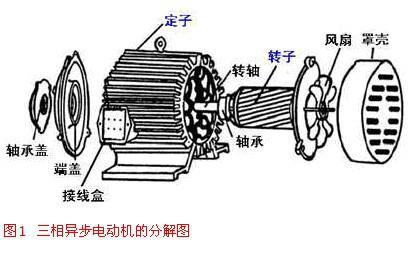 三相异步电动机的结构和结构图